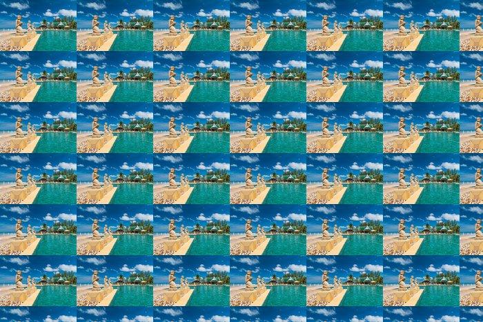 Vinylová Tapeta Fontána sochy na tropickém bazénu v Thajsku - Prázdniny