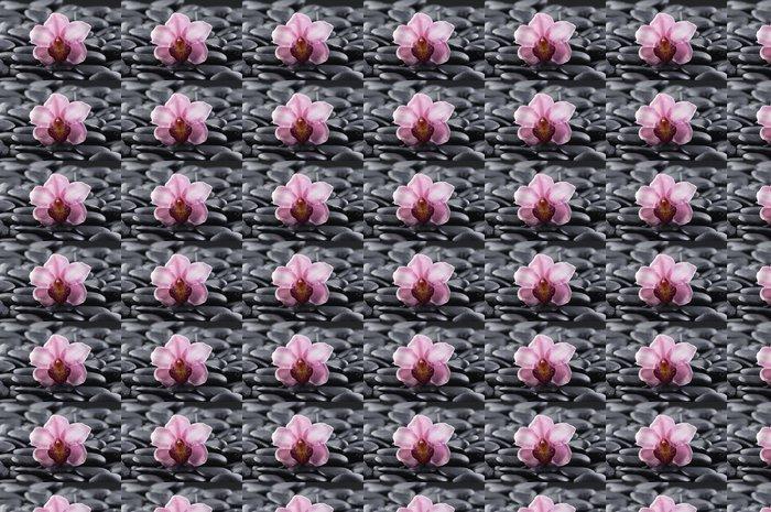 Vinylová Tapeta Krásné růžové orchideje s oblázkovou pláž pozadí - Životní styl, péče o tělo a krása