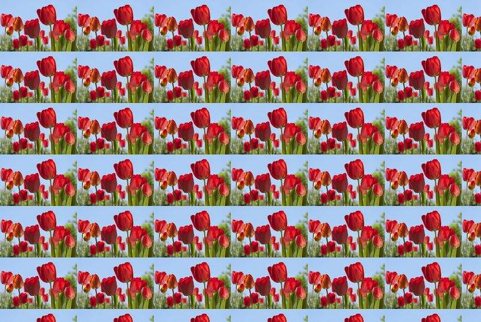 Vinylová Tapeta Souvislosti s tulipány - Témata