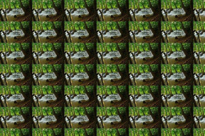 Vinylová Tapeta Přírodní Vodopády v deštných pralesů - Témata