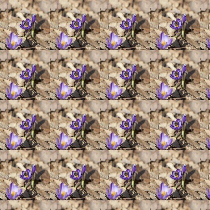 Vinylová Tapeta Bee opylovat šafrán - Roční období