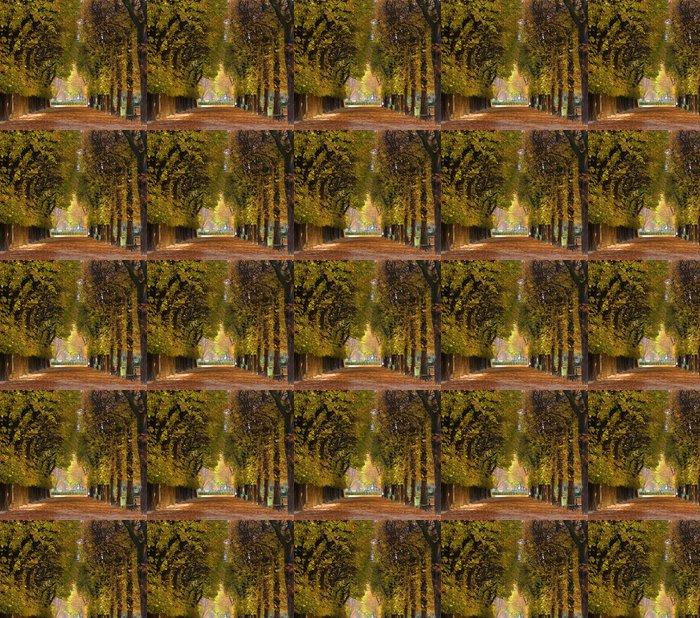 Vinylová Tapeta Alej stromů na podzim - Témata