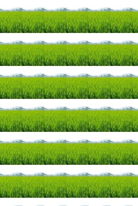 Vinylová Tapeta Rýžové pole v Thajsku - Roční období