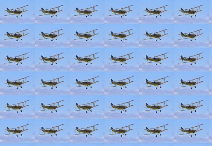 Vinylová Tapeta De Havilland DH-82 Tiger Moth - Vzduch
