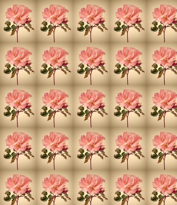 Vinylová Tapeta Vintage zahrada růžové růže - Květiny