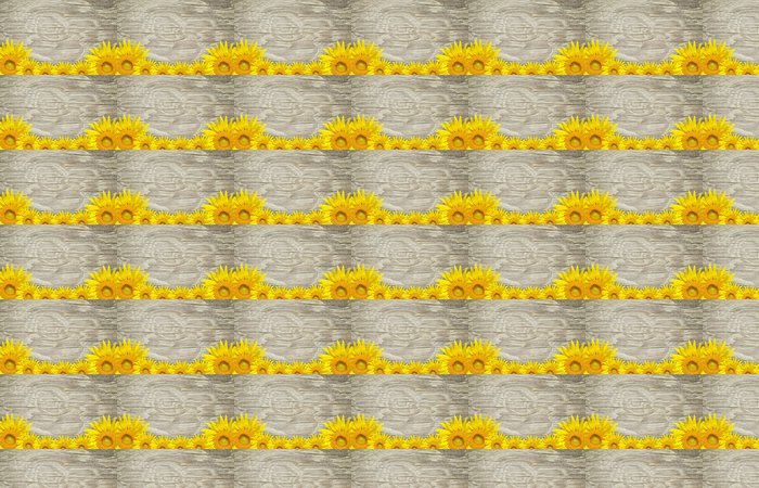 Vinylová Tapeta Starý dřevěný rám a pozadí s opalovacími květinami - Pozadí