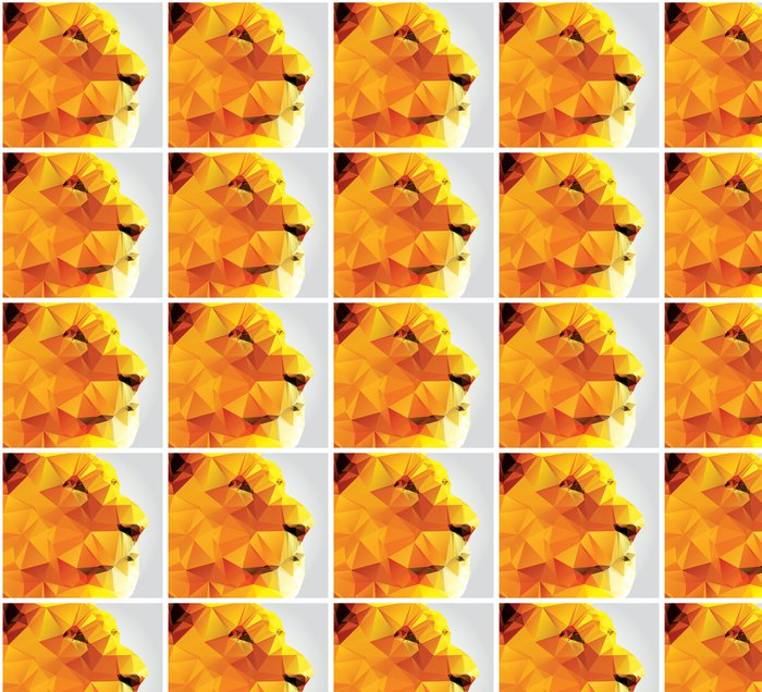 Vinylová Tapeta Geometrická polygon lví hlavy, profil, trojúhelník vzor - Savci