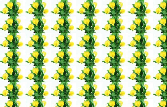 Vinylová Tapeta Kytice žlutých kala, - Rostliny