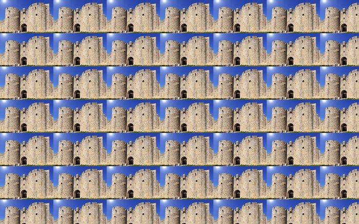 porte fortifiée d'Aigues Mortes Vinyl Wallpaper - Holidays