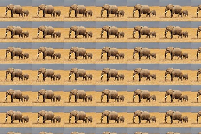 Vinylová Tapeta Slon africký s teletem, Amboseli Národní park - Témata