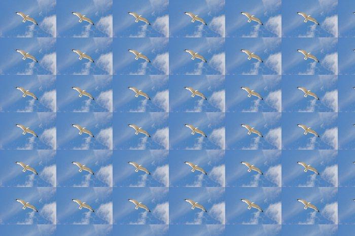 Vinylová Tapeta Létající racek - Svoboda