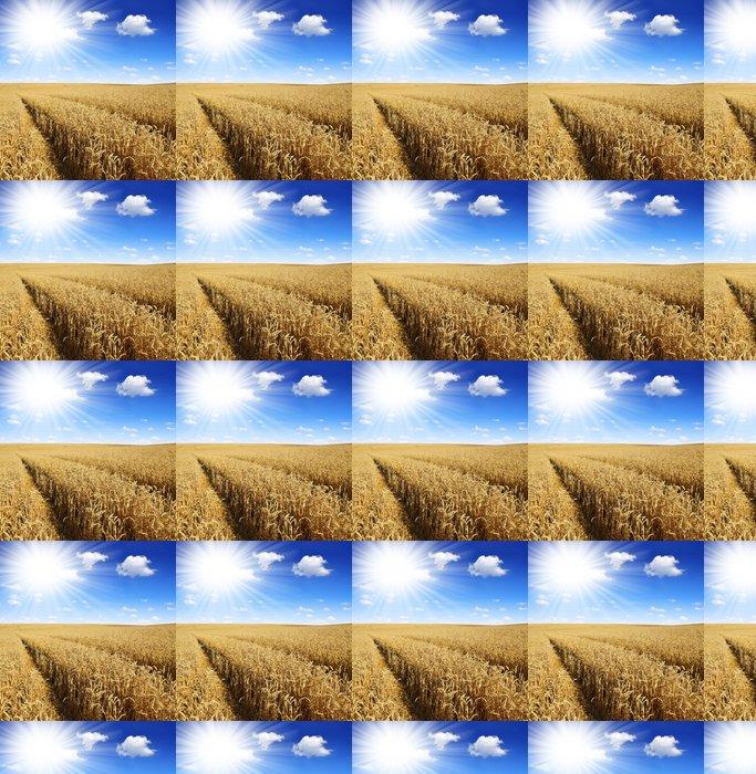 Vinylová Tapeta Zlaté pšenice s slunečné oblohy - Zemědělství