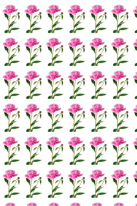 Vinylová Tapeta Růžová pivoňka - Květiny