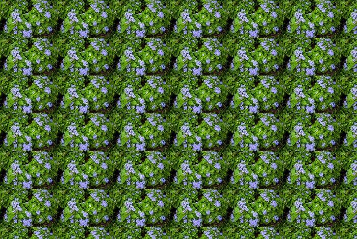 Vinylová Tapeta Modrý květ - Rostliny