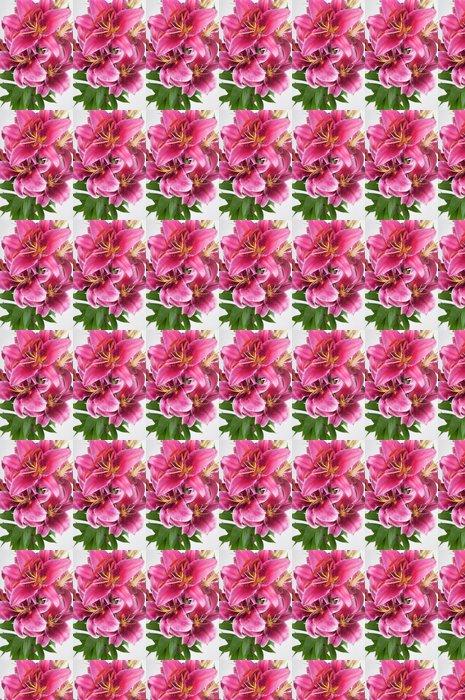 Vinylová Tapeta Lilie ve váze - Květiny