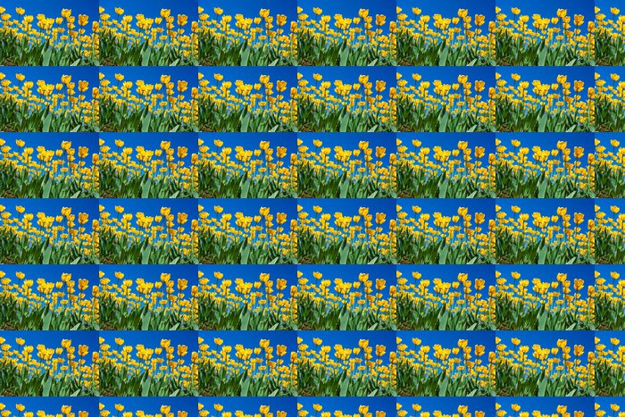 Vinylová Tapeta Tulipán květiny - Témata