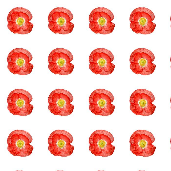 Vinylová Tapeta Mák červená se žlutými tyčinkami - Květiny