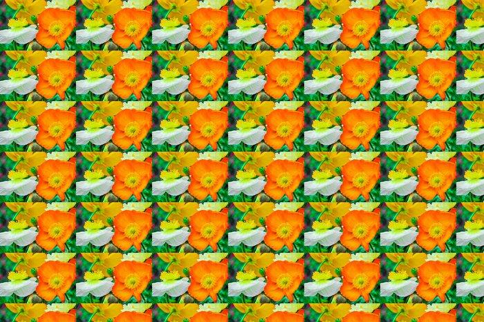Vinylová Tapeta Mák - Květiny