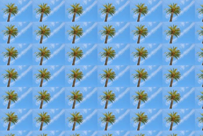 Vinylová Tapeta Slunný Palm Tree - Prázdniny