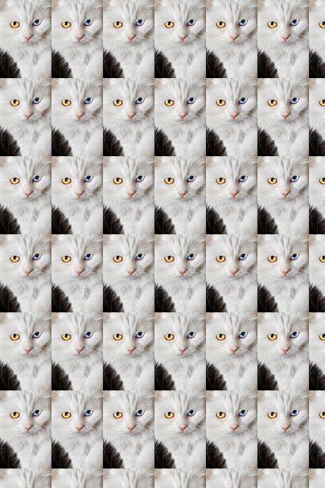 Vinylová Tapeta Varicoloured oči bílá kočka - Témata