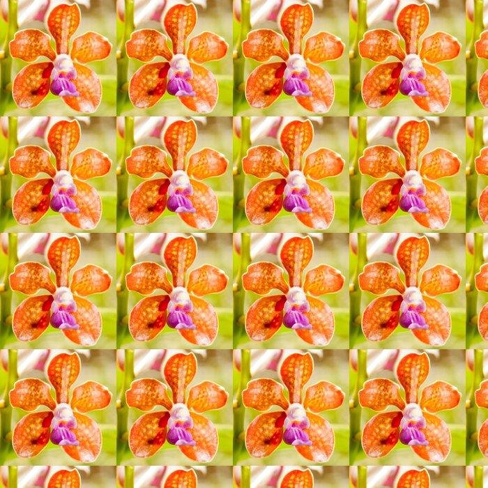 Vinylová Tapeta Orange orchidej - Květiny