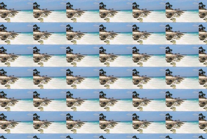 Vinylová Tapeta Landscape fotografie tropické pláže Aruba. - Oceánie