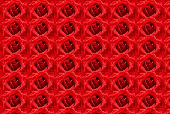 Vinylová Tapeta Červená růže se symbolem srdce z plátku v centru - Mezinárodní svátky