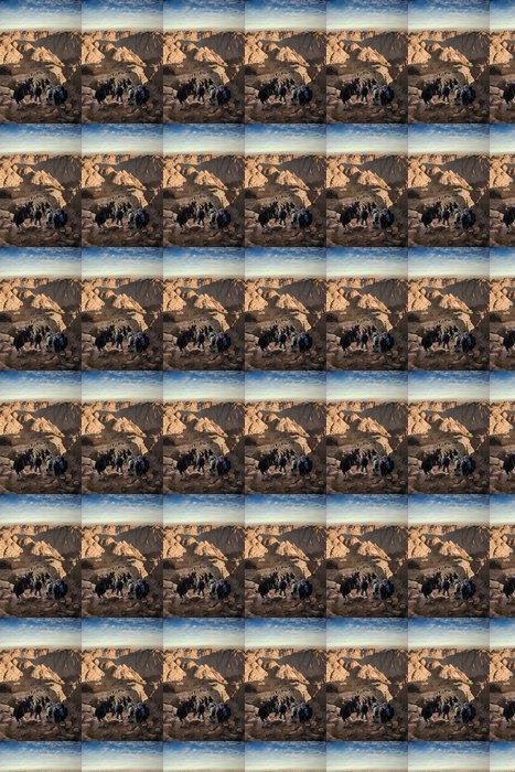 Vinylová Tapeta Lezení na horu Sinai, Egypt - Afrika