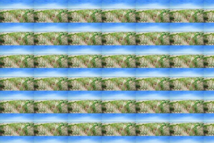 Vinylová Tapeta Klidná pláž s dunami a zelené trávy. Klidné moře - Voda