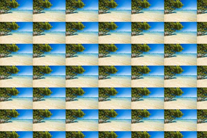 Vinylová Tapeta Stromy visí nad ohromující laguny s modrou oblohou - Prázdniny