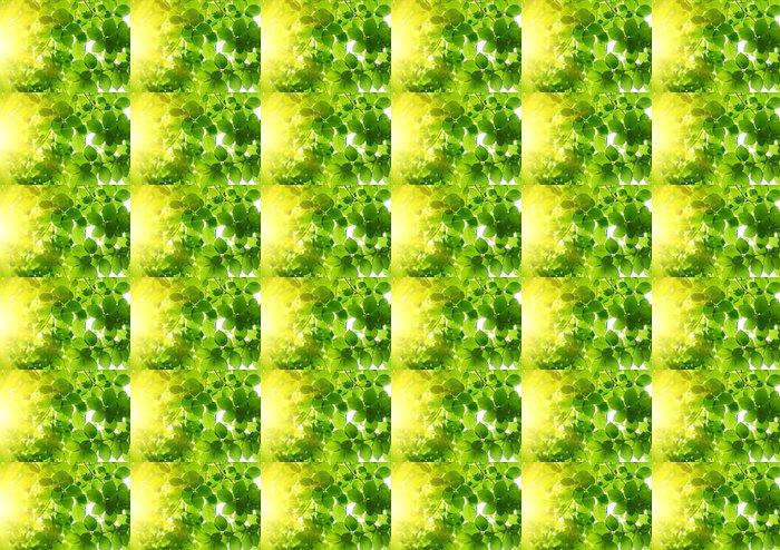 Vinylová Tapeta Zelené listy s Sun Ray - Témata