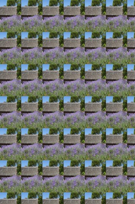 Vinylová Tapeta Lavender u statku v Tihany, Maďarsko - Květiny