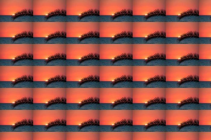Vinylová Tapeta Sunset beach, večerní moře, palmy - Palmy