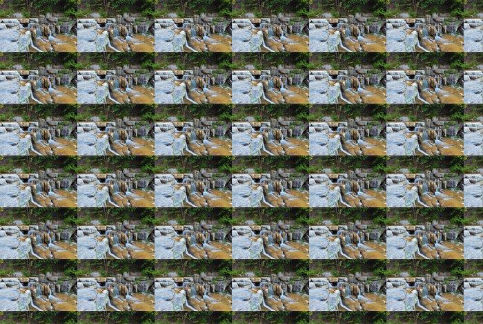 Vinylová Tapeta Vodopád v lese - Roční období