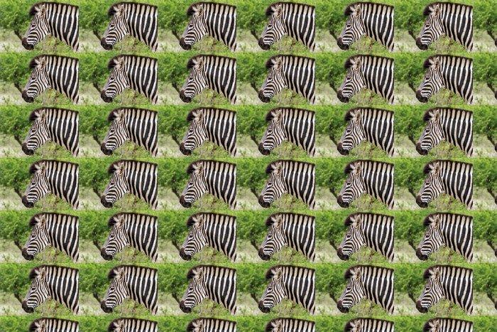 Vinylová Tapeta Zebra Head - Témata