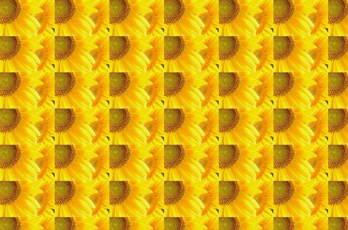 Vinylová Tapeta Makro obraz slunečnic - Témata