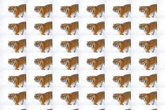 Vinylová Tapeta Krásný divoký tygr ussurijský na sněhu - Savci