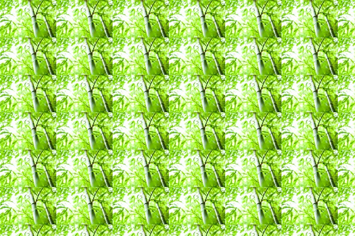 bamboo forest Vinyl Wallpaper - Themes