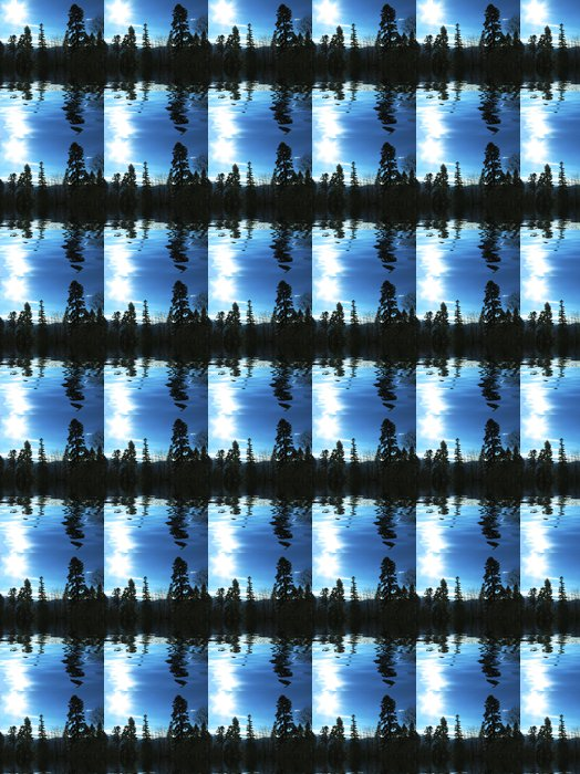 Vinylová Tapeta Slunce a strom silueta - Voda