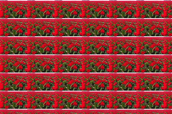 Vinylová Tapeta Červené tulipány - Zemědělství