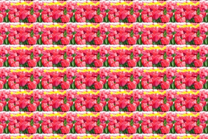 Vinylová Tapeta チ ュ ー リ ッ プ の お 花 畑 - Květiny