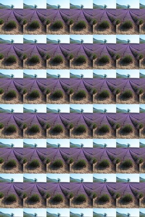 Vinylová Tapeta Osamělý mandle v levandule oblasti - Zemědělství