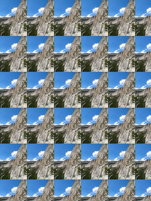 Vinylová Tapeta Yosemite skály - Amerika