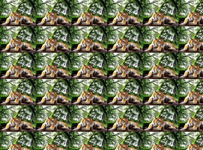 Tiger Looking Something On The Rock In Tropical Evergreen Forest Vinyl Wallpaper