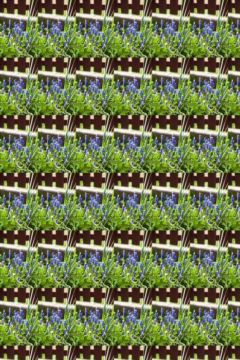 Vinylová Tapeta Modřenec květiny - Květiny