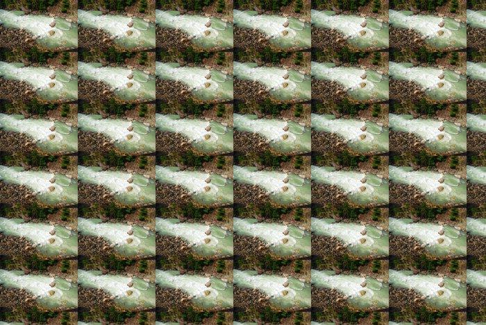 Vinylová Tapeta Whistler River - Amerika
