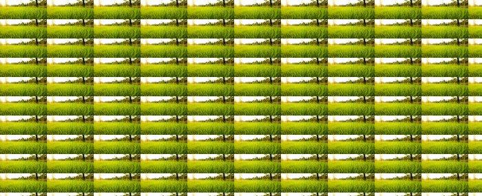Vinylová Tapeta Lush Grass - Roční období