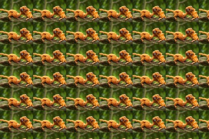 Vinylová Tapeta Roztomilý zlatý lev tamaríni s dítětem - Savci
