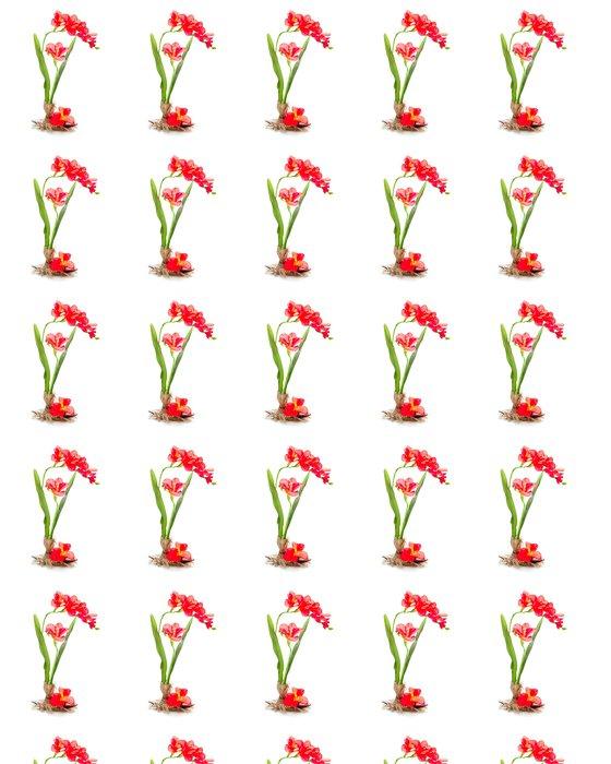 Vinylová Tapeta Zátiší z umělých květin jednoho freziya - Slavnosti