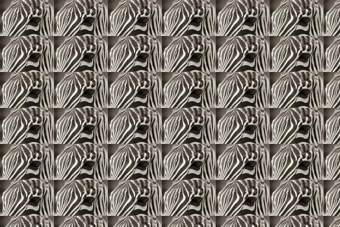 Vinylová Tapeta Zblízka hlavou zebra, sépie pohled - Témata